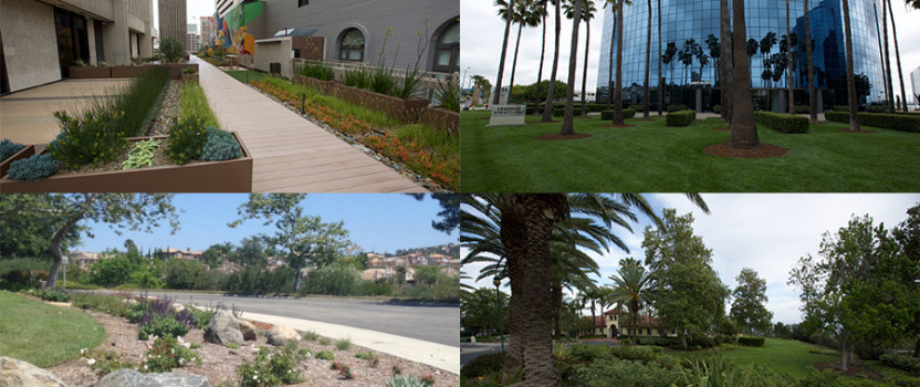 CLCA San Diego Honors Top Landscape Contractors with Annual Beautification Awards