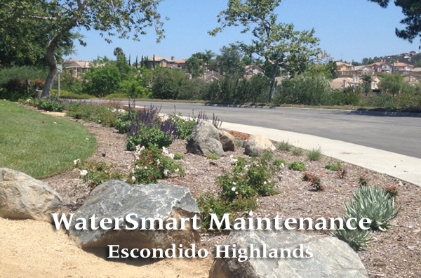 Escondido Highlands-watersmart-blog-benchmark