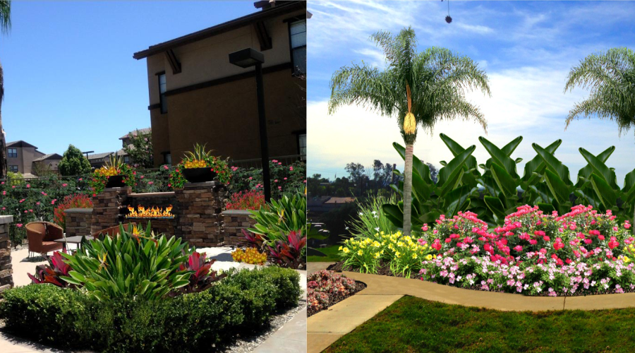 Ideas Become Reality with Expert Landscape Designers