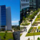 Modern Maintenance: State-of-the-art Landscaping for One of San Diego's Top Tech Companies