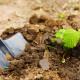 Soil Probes in Your Landscape
