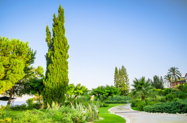 Preparing Your Landscape For Summer