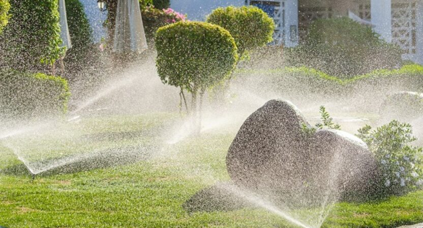 Ways to Reduce Water Usage on Your Property