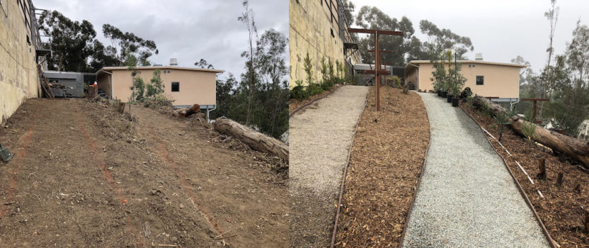 Functional, Sustainable Landscaping to Feed Animals at the San Diego Zoo