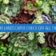 Does Your Commercial Landscape Contractor Check Off All the Boxes?