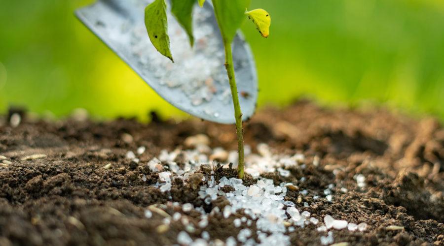 All About Landscape Fertilizers