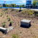 All Your Questions About Bioretention Systems Answered